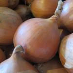 Yellow Onions - Oignons jaunes